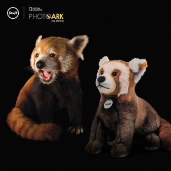 Steiff-echter-roter-Panda.jpeg