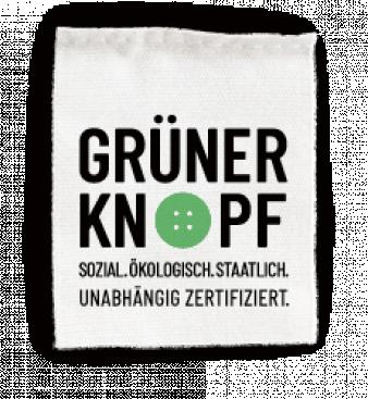 Der-gruene-Knopf.png
