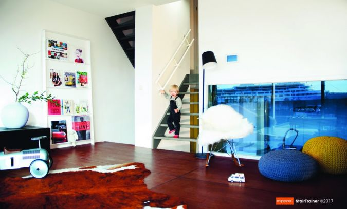 Mippaa-Stair-Trainer-Image.jpg