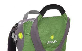 LittleLife-Kinderkraxe.jpg
