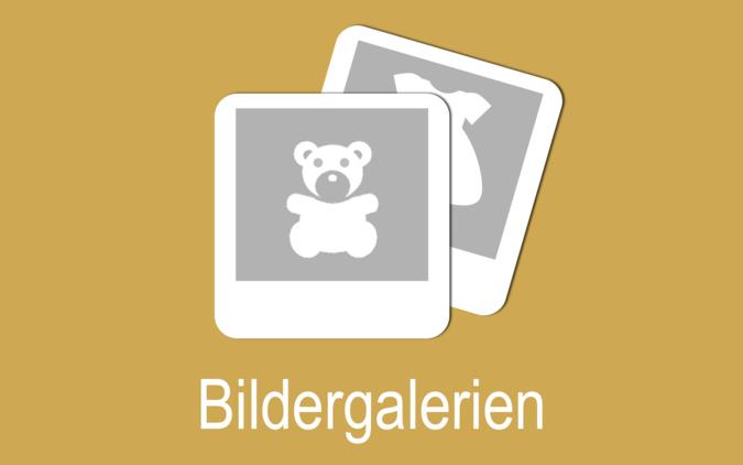Icon Bildergalerien