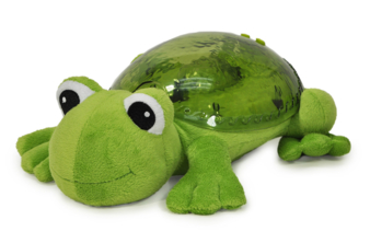 aa Tranquil-Frog-1000x656