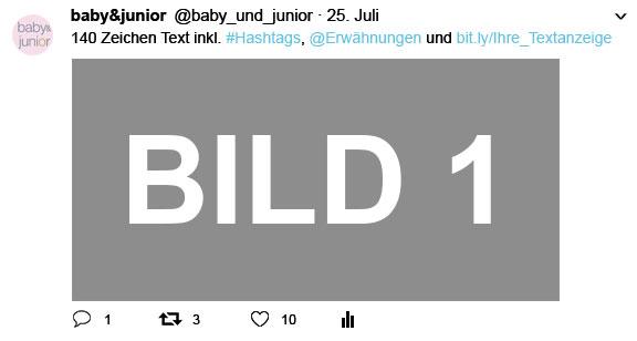 BJ_Ansicht_Twitter_Mediadaten